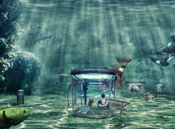 aquarium-18+-unterschrift-+-schärfung.jp