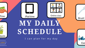 A Visual Schedule Giving Predictability and Teaches Time Concept   FREE Printable