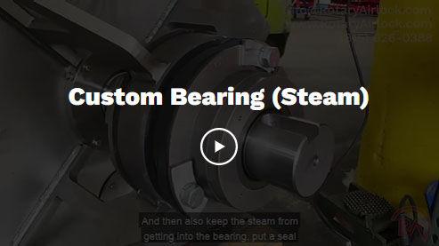 Custrom Bearing.jpg