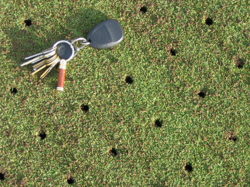 Putting Green Aerification Close up