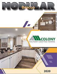 11421_Colony-Beacon-Mod-Cover-2020.jpg