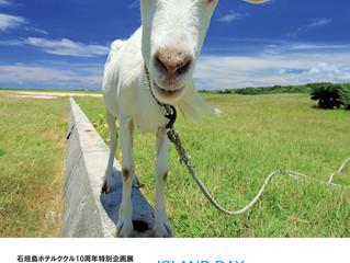 石垣島で個展「しまのひ」