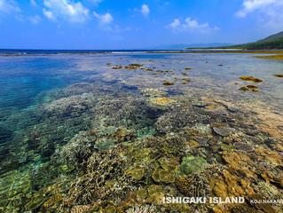 ヤマバレーの海
