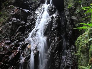 ぶざまの滝