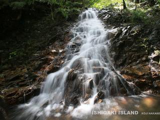 於茂登岳 登山道の滝