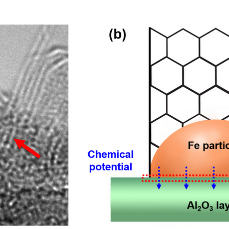 The influence of boundary layer on the growth kinetics of carbon nanotube forests