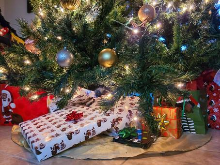 Winter Joy Boxes