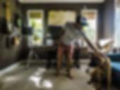 studio dog up 2.jpg