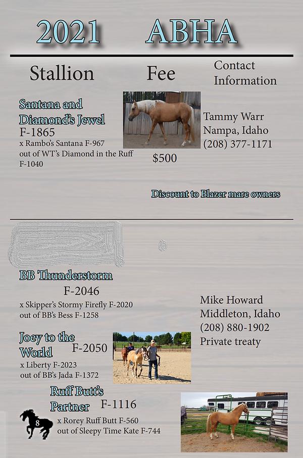 abha stallion listing  2021_03.png