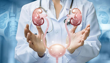Urology-and-its-treatment-in-Dubai.jpg