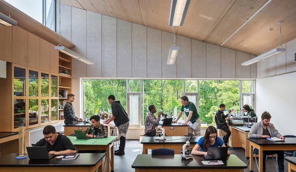 Sala de aula com predominantemente em madeira com vista para um bosque