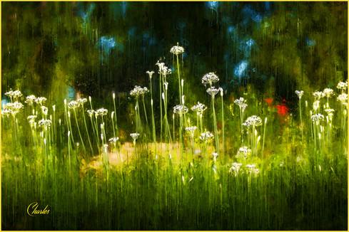 FLOWERS_425_PAINTED.jpg
