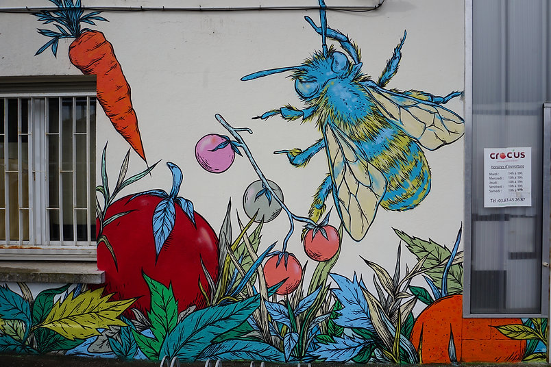 Runs Mural Crocus Nancy