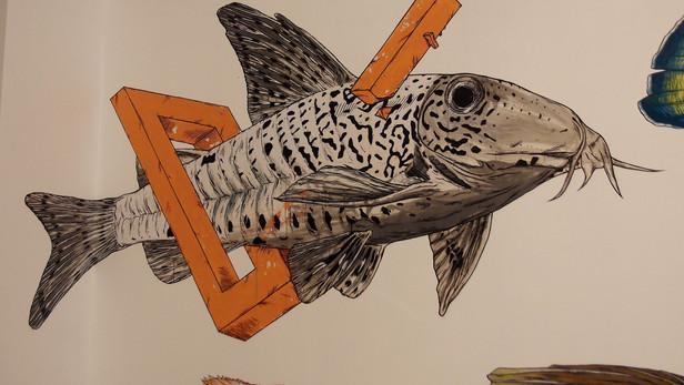 Teuthis X Runs Muséum aquarium de Nancy