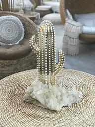 Gold Cacti