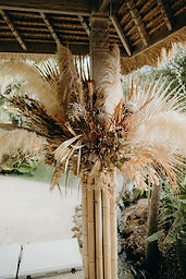 Bamboo Dried Florals