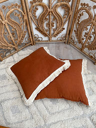 Terracotta Fringe Cushion