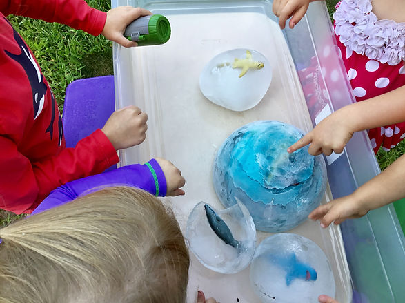 Sea Life Ice Globes for Exploration Acti