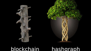 Is Hashgraph Just the Next Step in Distributed Trust?