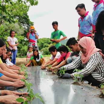 #TatagPinoy: Cultivar en la Agua: a Hydroponics Sustainable Way to Gardening