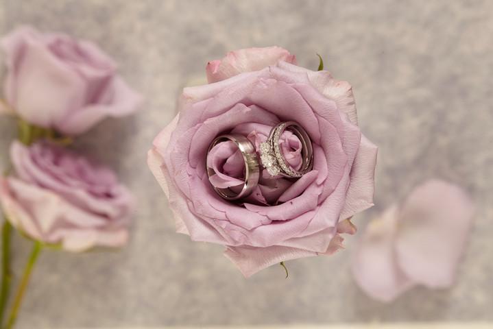 Rose 3.jpg