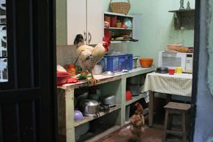 gallos en la cocina