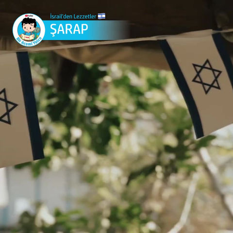 İsrail'den Lezzetler: İSRAİL ŞARABI