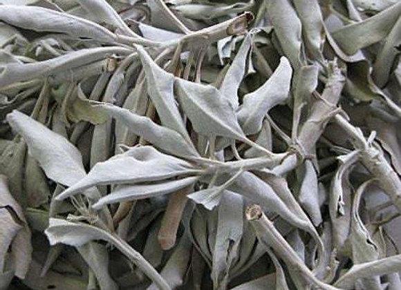 White Sage 3oz Bag