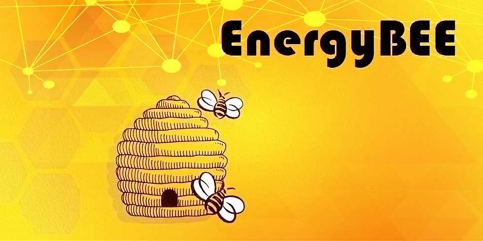 EnergyBEE - Angus Wright: Presenting to Online Audiences