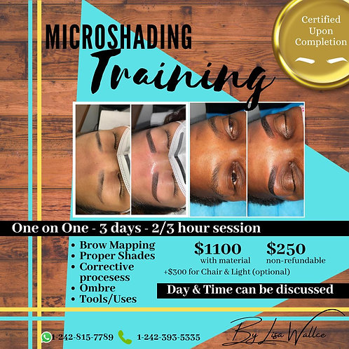 Micro Shading Workshop (One on One)