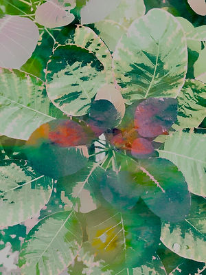painting of leaves