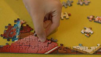 Pandemic Puzzles