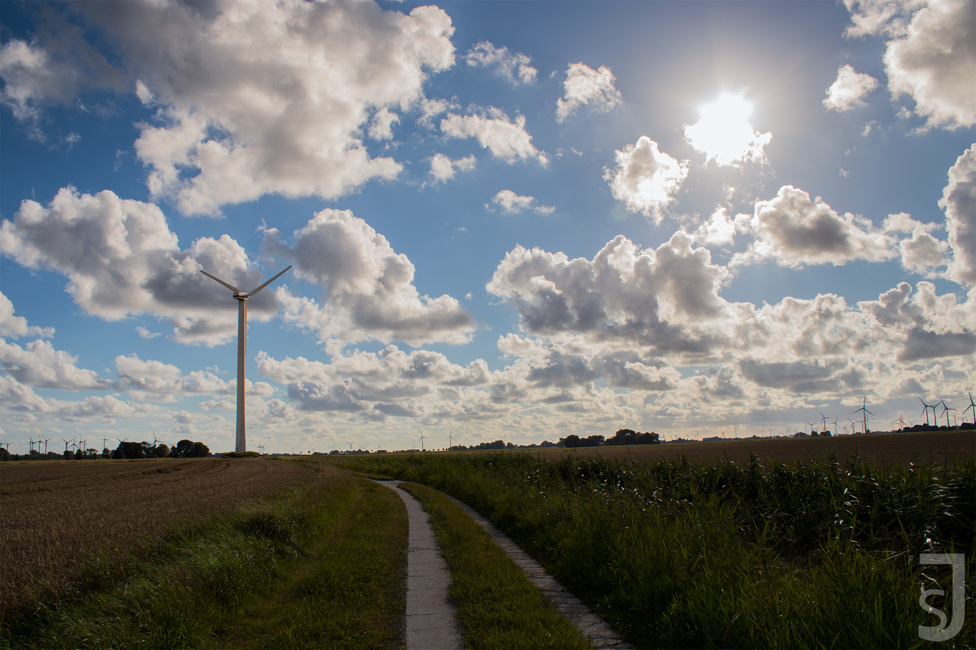 Feld und Windrad (Sonne), Norddeutschland