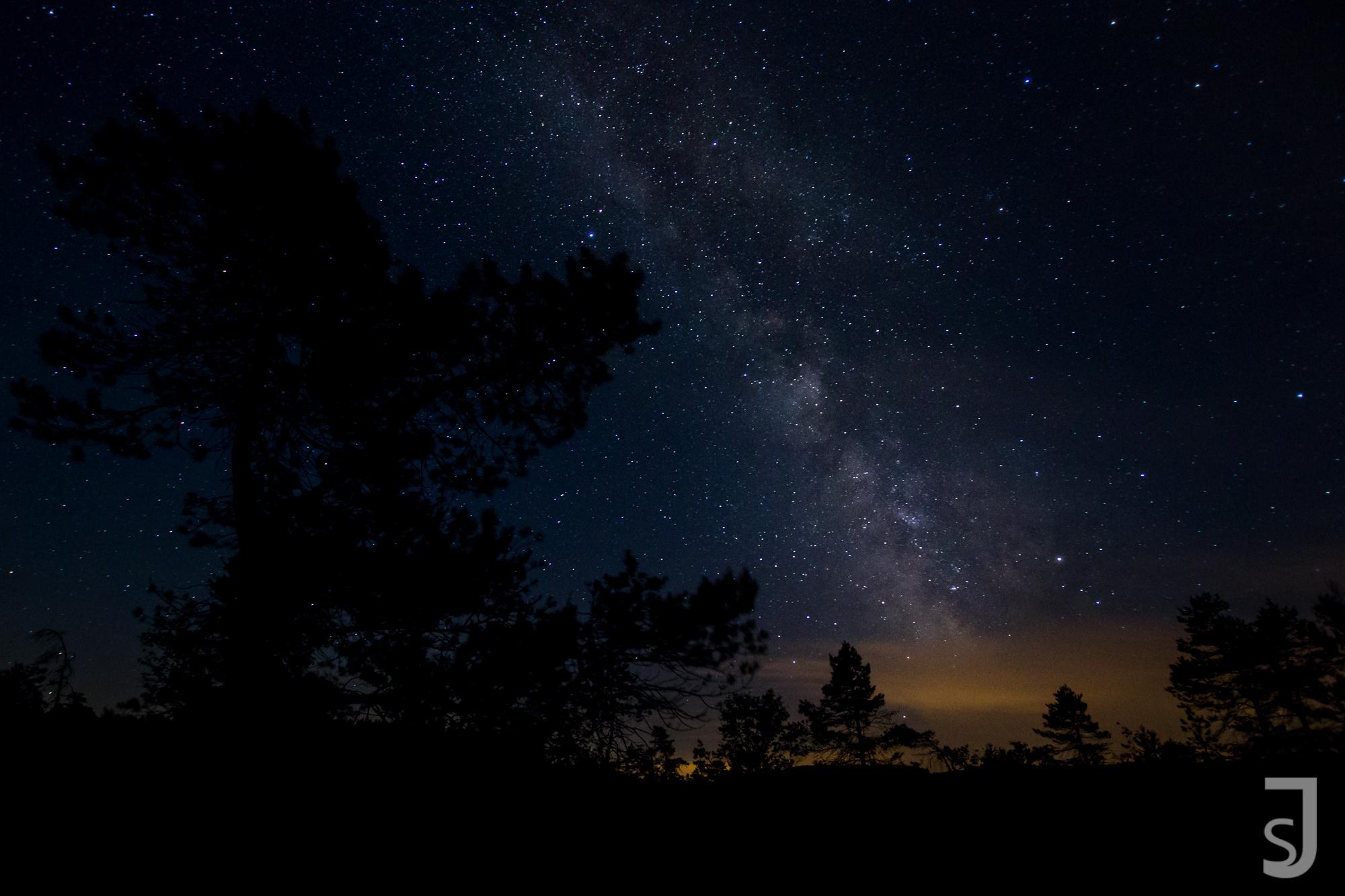 Milchstraße mit Baum