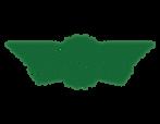 Wingstop Correct logo.png