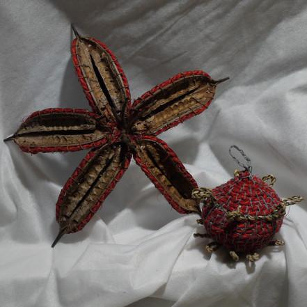 Pod stars for the Xmas tree