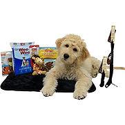Pet Supplies.jpg