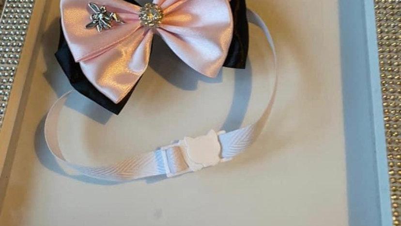 Fairy cat /dog collar