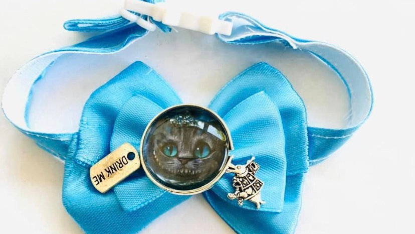 Alice themed cat/dog collars