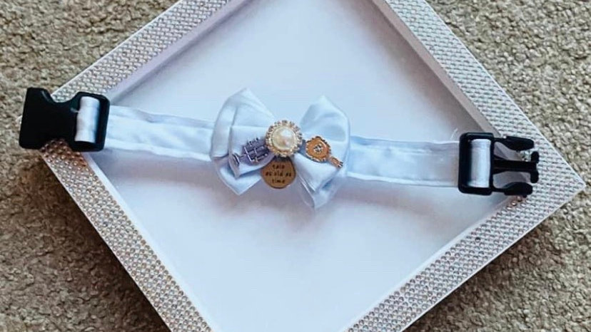 Beauty and the beast inspired cat/dog collars