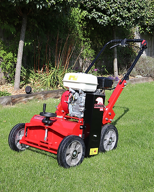 LS42LawnScarifier3_large.png
