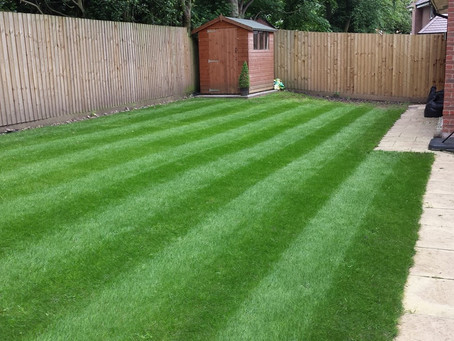 The benefits of treating your lawn with iron in the winter