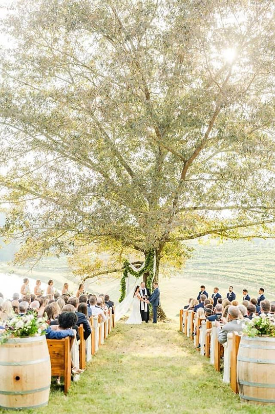montaluce wedding 5.jpg