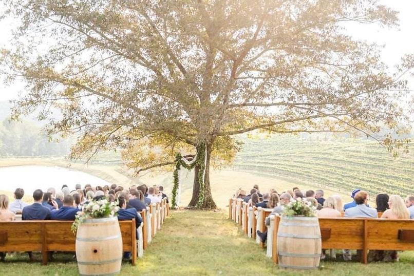 montaluce wedding 7.jpg