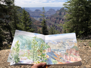 View from the North Rim of the Grand Canyon, Widforss Trail, 2019