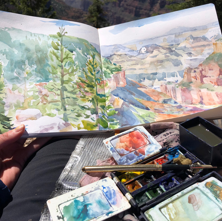 Watercolor from the Widforss Trail