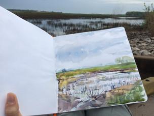 Riverlands near Alton, Illinois 2018