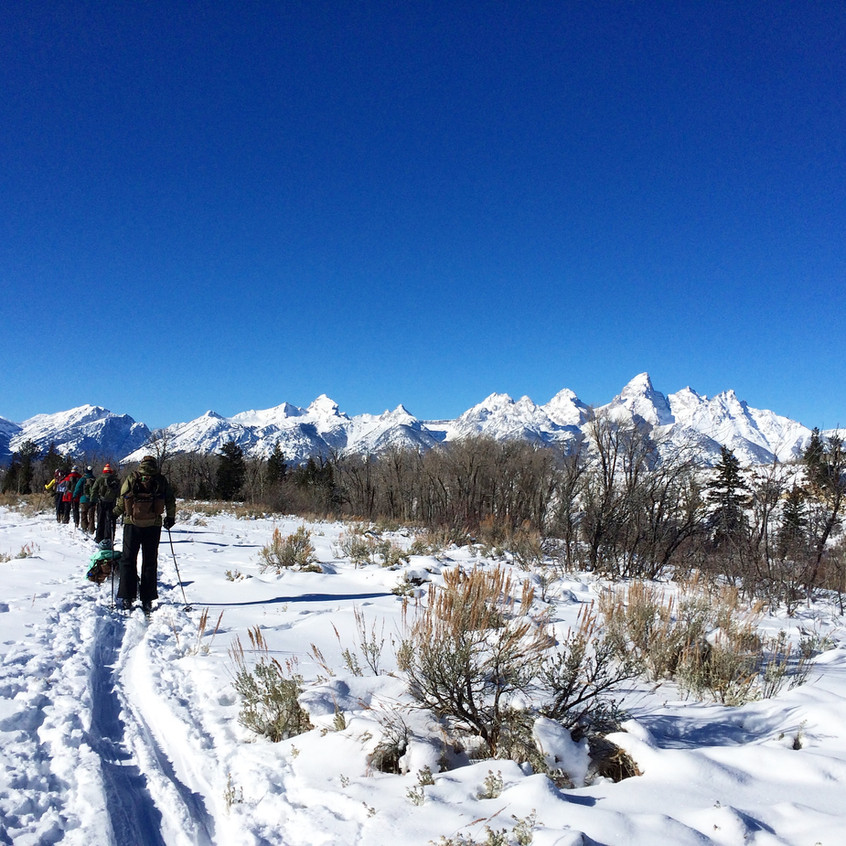Cross Country skiing and tracking