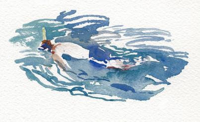Snorkler on the Amalfi Coast, 2008