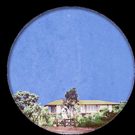 Logo cor Casa da Arte _ fundo.png